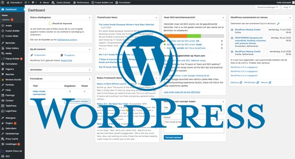WordPress website e2omedia