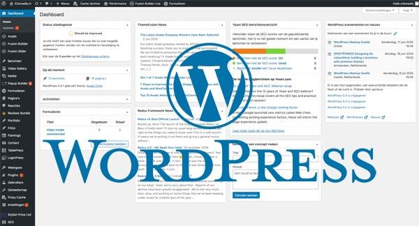 WordPress website e2omedia